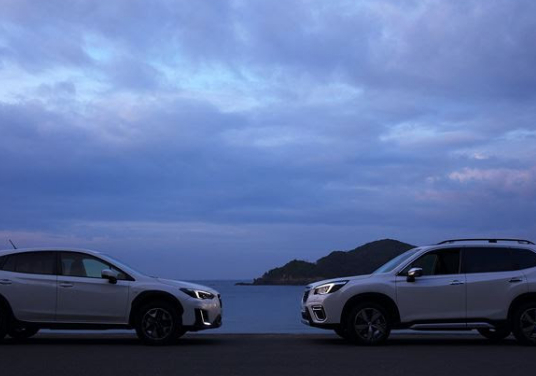 Subaru Dealerships are Now Open – with Safety Measures in Place