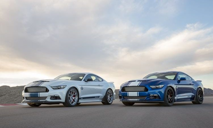 Ford and Shelby SA celebrate World Snake Day with the Shelby Super Snake
