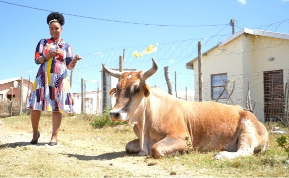 Singer-Songwriter Zahara Takes Fans On A Tour Of Her Eastern Cape Village On The Insider SA