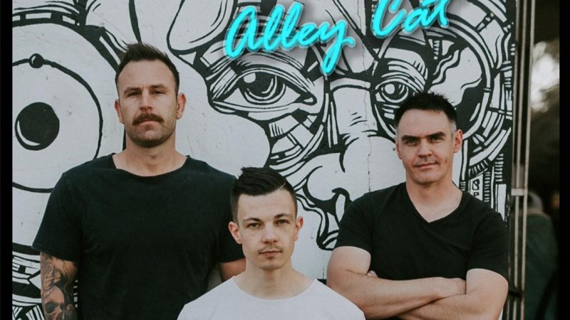 Tailor & Tramp plays the perfect wild card with new single, Alley Cat