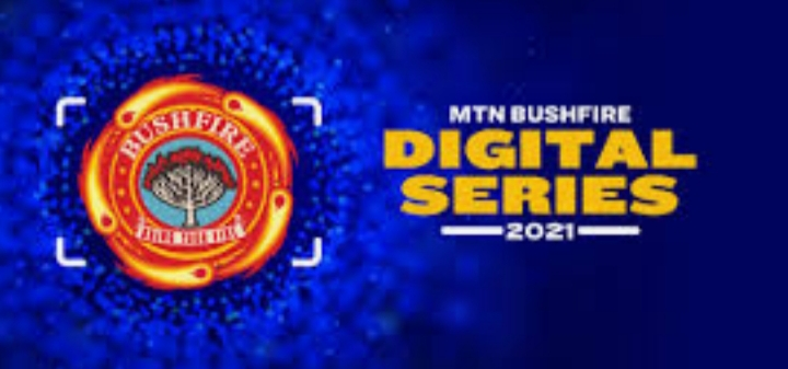 MTN Bushfire Ignites the Digital Space  Digital Festival 24 September 
